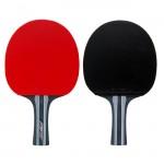 CHAMPION R 490 PRO ракетка для настольного тенниса